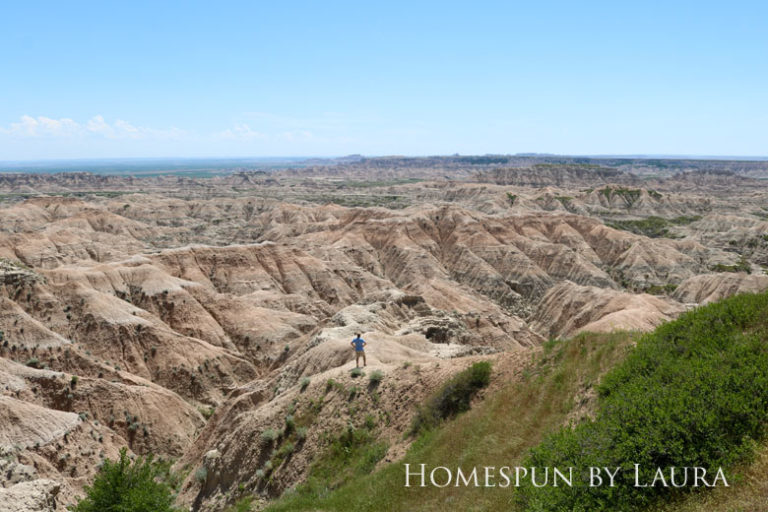 Using a telephoto lens in the Badlands | Homespun by Laura