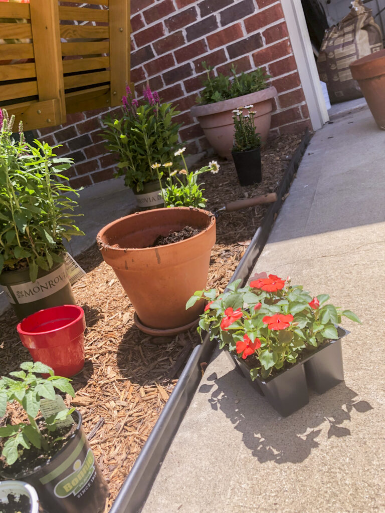 DIY Front Porch Refresh   simple ideas for big impact changes   new plants